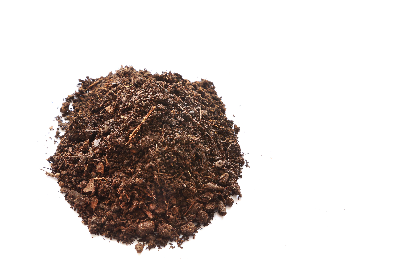 bokashi soil